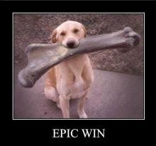 128733470418286660_Epic_Wins-s500x483-48791-580