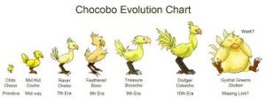 No, you can't take away the Chocobos!
